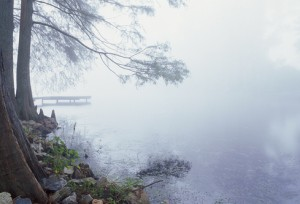 photo image: foggy river bank